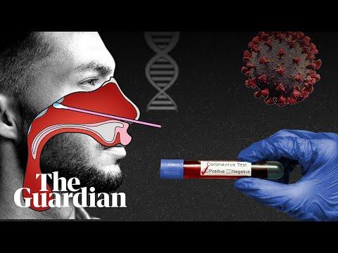 humán papillomavírus vakcina ppt