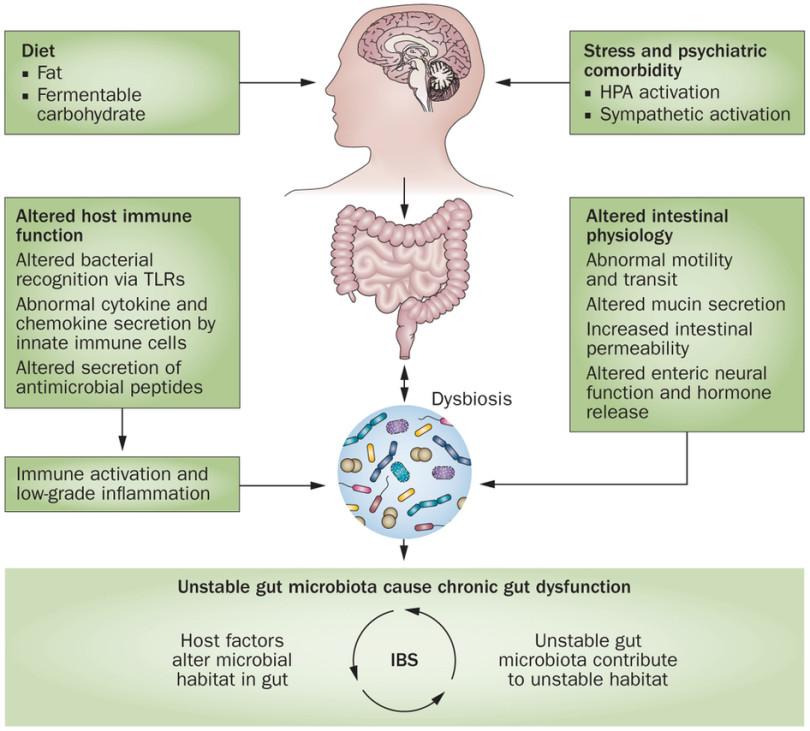 szájüregi rák a rossz higiénia miatt