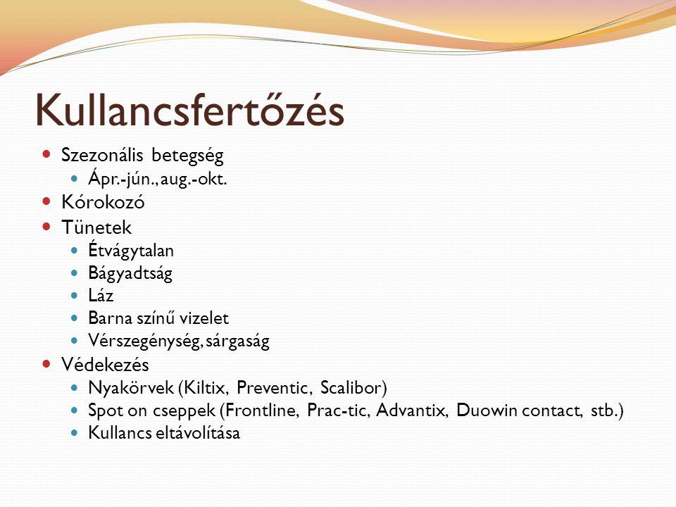 Fejfájás: a kezelés okai és jellemzői - Melanóma