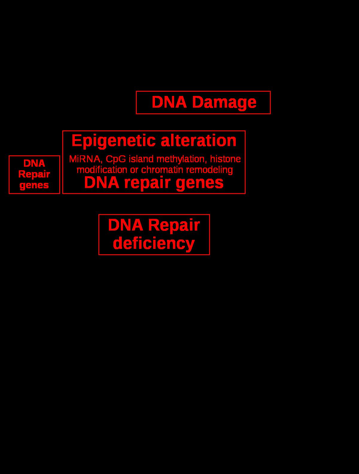 papilloma vírus torok tünetei hpv száj torok rák tünetei