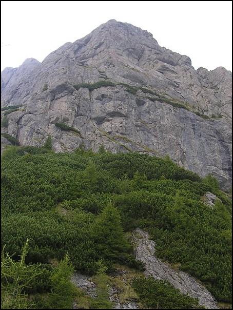 nedves repedés a hegyek között amely parazitákat okoz az emberi gyomorban